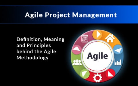 agile project management definition and guide